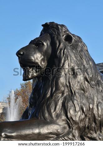 Close up of lion statue in Trafalgar Square, London - stock photo