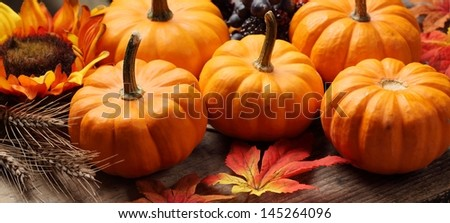 Close-up of little pumpkins, grain and autumn decorations.