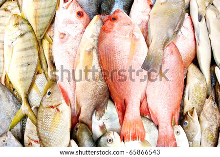 Close up of lovely fresh fish in a wet market - stock photo