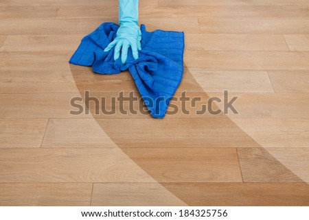 Close-up Of Maid Wearing Gloves Cleaning Floor - stock photo