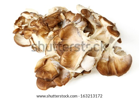 Close Up Of Maitake Mushrooms Over White Background - stock photo