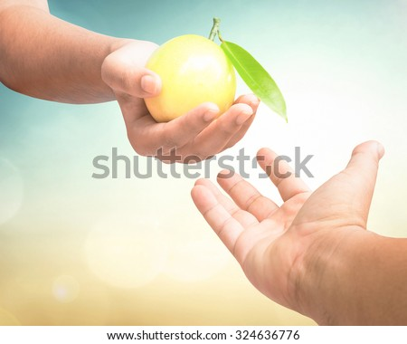 Close up of man hand reaching out to yellow fruit in woman hand over blurred nature background. Tree of life  and tree of knowledge of good and evil from holy bible concept. - stock photo