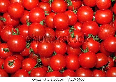 Close up of many fresh red tomatoes cherry type. - stock photo