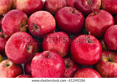 Close-up of many red juicy apples