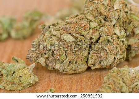 Close-up of marijuana bud - stock photo