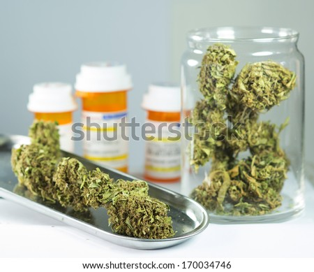 close up of marijuana plant - stock photo