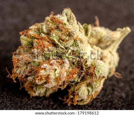 Close up of medicinal marijuana buds on black background - stock photo