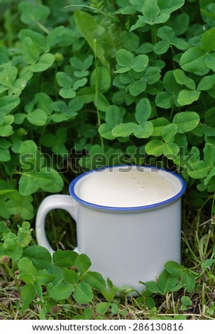 Close up of milk cup in clover grass, mug with milk over clover background