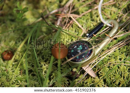 Close-Up of mushroom with small compass on the moss. Wild forest fungi. Summer season - stock photo