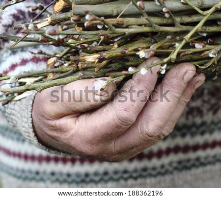Close up of old man hand  - stock photo