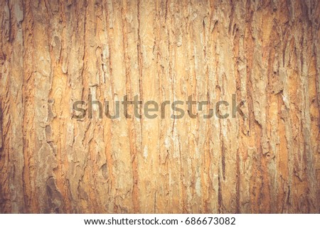 Close up of old tree cracked texture. Nature vintage background