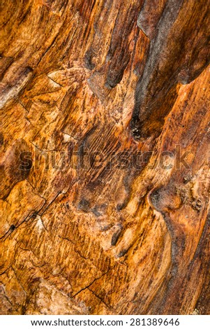 Close up of old wood texture background