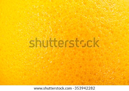 Close up of orange - stock photo