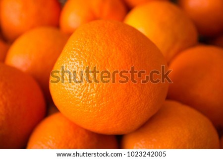 stock-photo-close-up-of-orange-fruit-sta