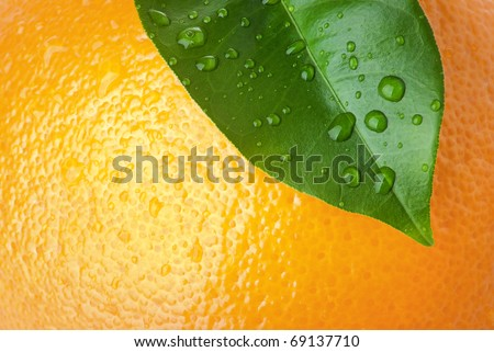 Close-up of orange peel and green leave - stock photo