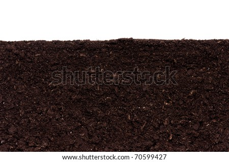 Close-up of organic soil. Can be used as background. - stock photo