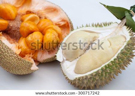 Close up of peeled durian & artocarpus integer over white background. - stock photo
