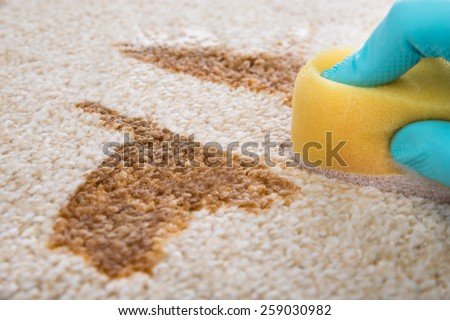 Close-up Of Person's Hand Cleaning Stain On Carpet With Sponge - stock photo