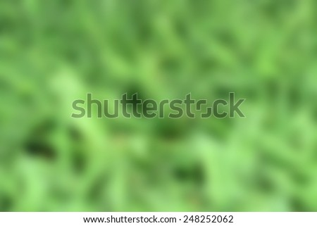 Close up of rain water on blurred green leaf background - stock photo