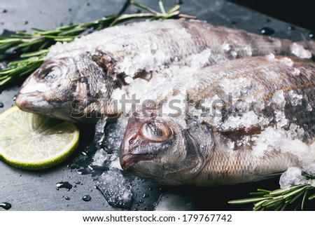 Close up of raw dorado fish with rosemary and lime under ice over black stone background. See series - stock photo