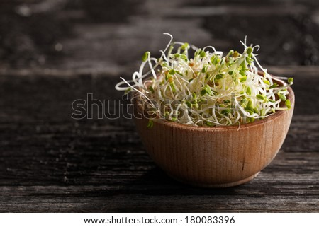 Close-up of Red Clover Sprouts in a Wooden bowl