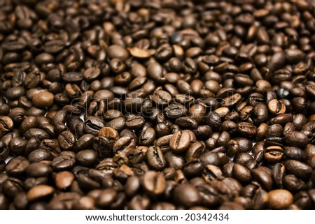 Close up of roasted coffee beans. - stock photo