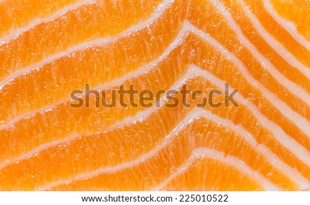 Close up of salmon slices. - stock photo