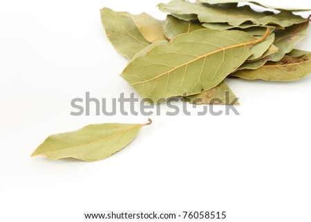 Close up of several leaves of bay leaf spice on white background - stock photo