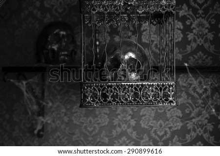 Close Up of Shiny Gothic Skull Imprisoned in Ornate Metal Cage Inside Eerie Room with Patterned Wallpaper and Covered in Cobwebs - stock photo