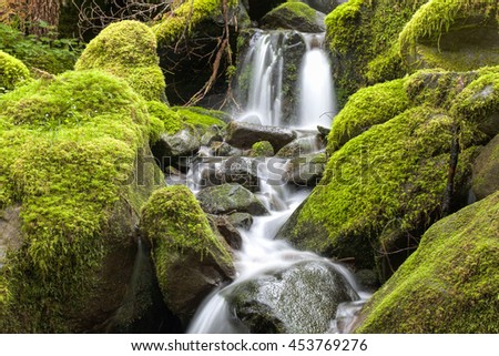Close up of small waterfall and mossy rocks in Washington. - stock photo