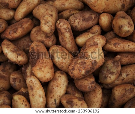 close up of sweet potatoes on market stand  - stock photo