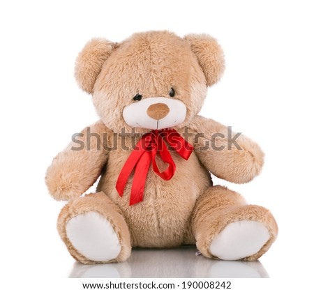 Close up of teddy bear. Isolated on a white background. - stock photo