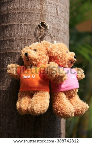 Close up of Teddy bear key chain with palm tree background.
