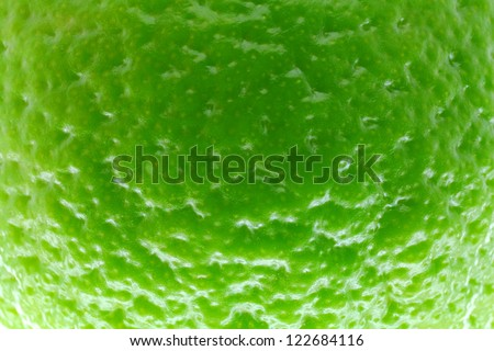 Close-up of the lemon skin. - stock photo