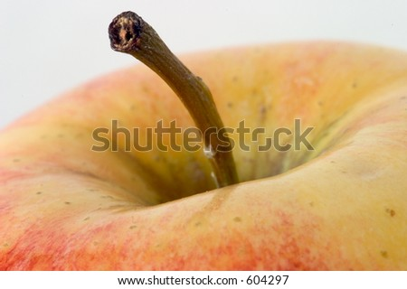 Close-up of the top of an apple, with the main focus on the stem. - stock photo