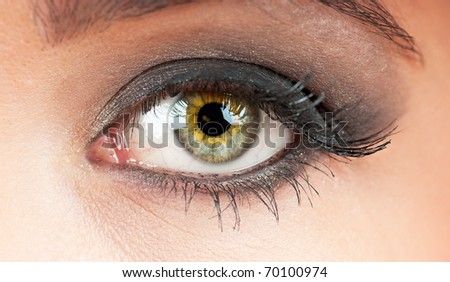 Close up of the woman eye