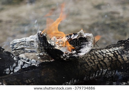 Close up of the wood burns on fire. Beautiful fire with flames charred wood. - stock photo