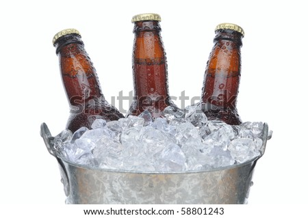 Close up of three brown beer bottles with condensation in a bucket of ice. Horizontal format isolated on white.