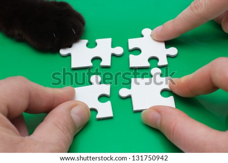 Close up of three people hands and cat feet with puzzle