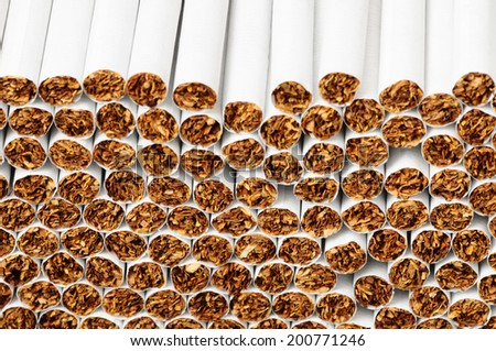Close-up of Tobacco Cigarettes Background or texture - stock photo