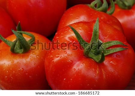Close up of tomatoes with water drops - stock photo