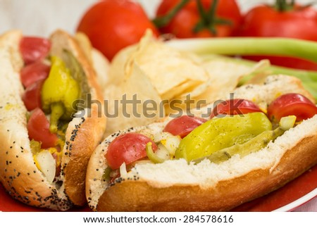 Close up of two Chicago style hot dogs with peppers and tomatoes