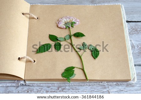Close-up of two dried flowers in book on wooden table - stock photo