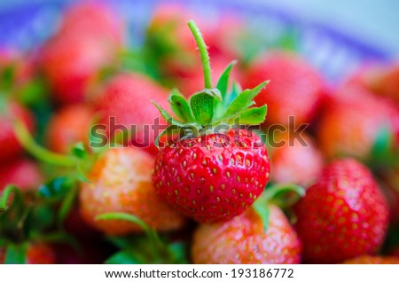 Close-up of unripe strawberry