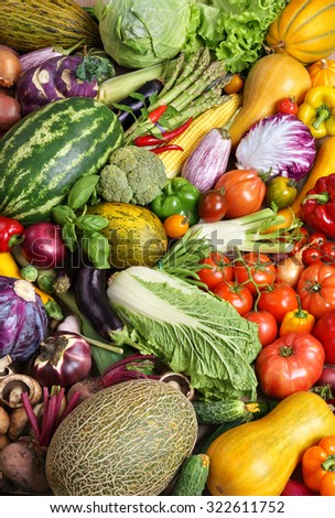 Close up of various colorful fresh vegetables / food photography of the variety of vegetables at the market - stock photo