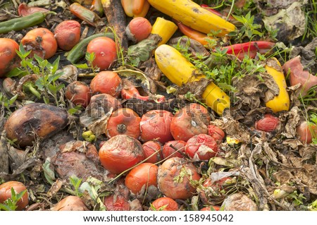 Close up of Vegetable Compost Pile in a Farm Field to Replenish the Ground with Nutrients  - stock photo