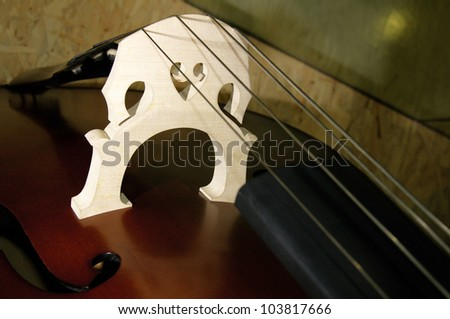 close up of violin - stock photo