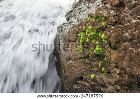 Close up of waterfall - stock photo