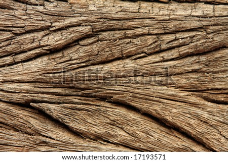 Close-up of weathered wood