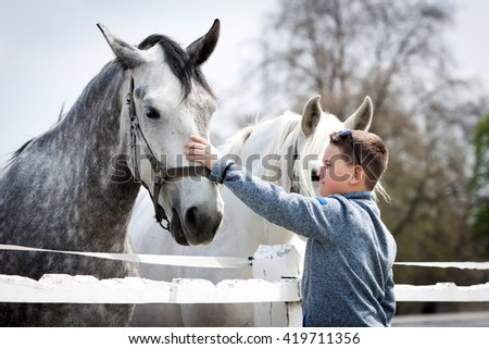 Close up of white horse with boy and soft touch